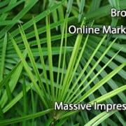 Broward Online Marketing