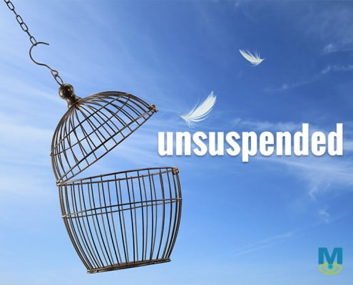 we help sites that got suspended