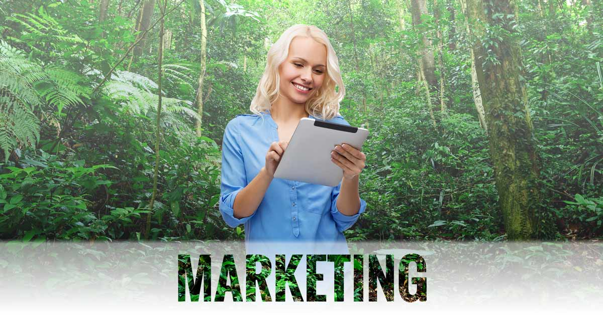 Marketing in Florida, Marketing in South Florida, Marketing in Boca Raton