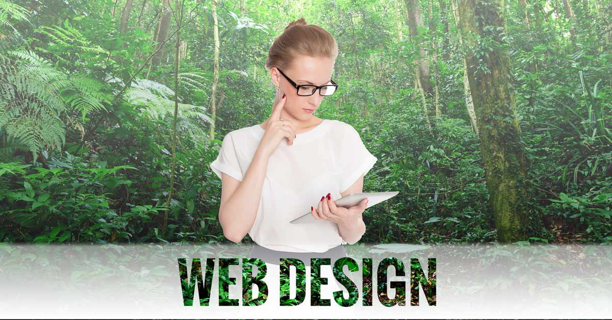 Web Design in Boca Raton, FL